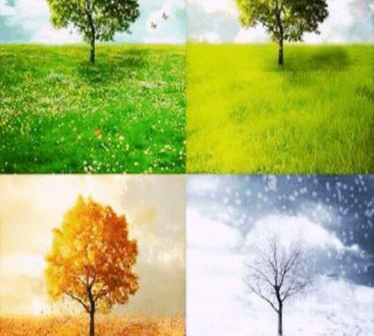 Las cuatro estaciones