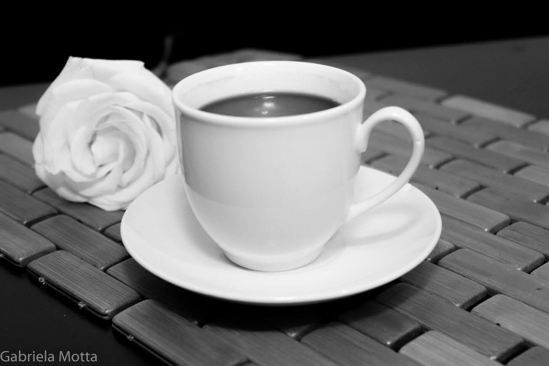 El café de la Rosa Blanca